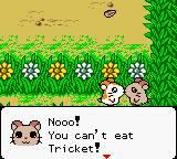 Com screenshots como este não admira que eua achasse que este jogo teria algo de RPG